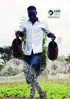 LuxDev brochure